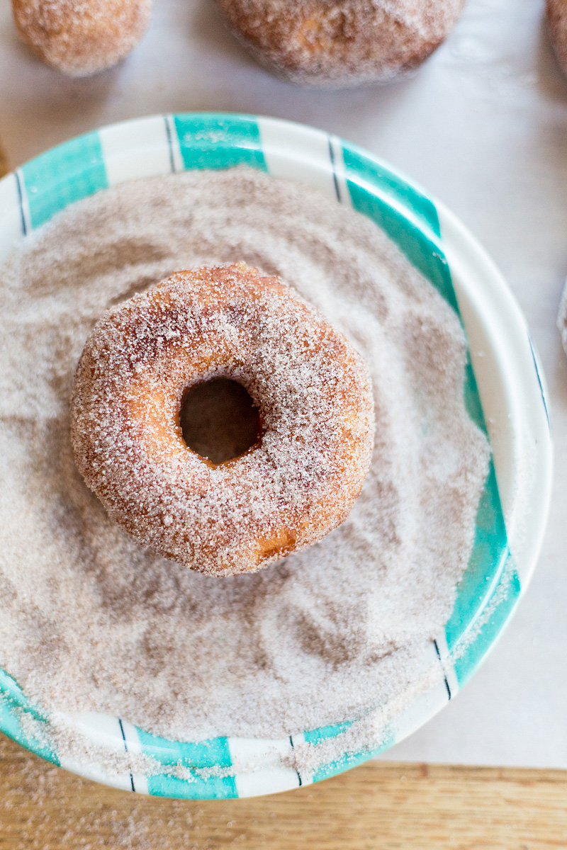 donut in cinnamon sugar
