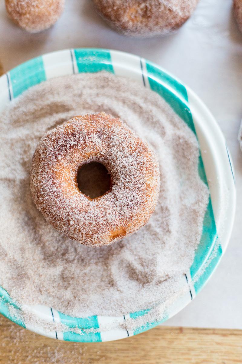 biscuit donut