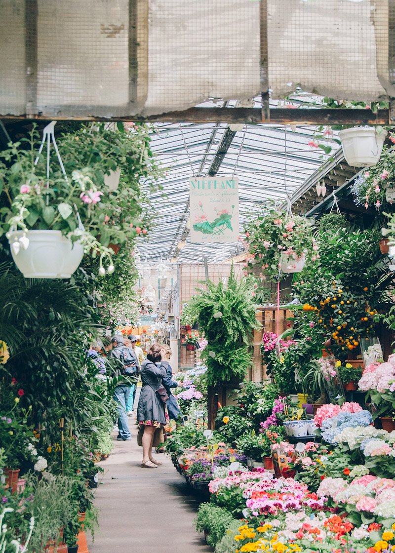 Flower Market in Paris